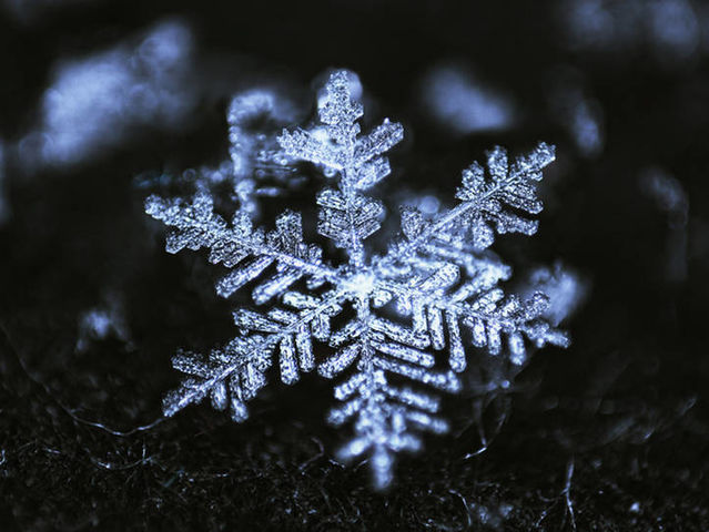 What was the size of the largest snowflake ever recorded?
