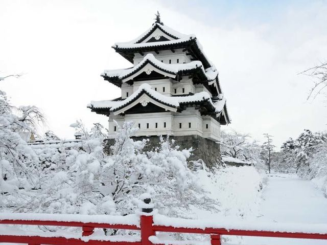Aomori City in northern Japan gets an average of about 312 inches of snow per year!