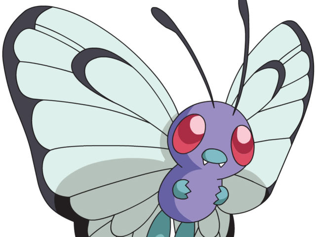 It's Butterfree!