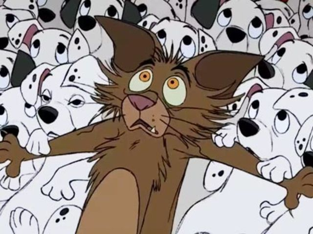 Remember this plucky little cat from 101 Dalmatians?