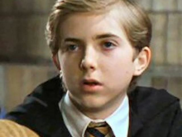 This is Ernie Macmillan, a Hufflepuff who purportedly studied harder for his O.W.L.s than even Hermione Granger.