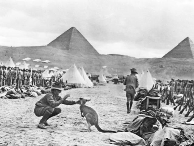 Who was appointed Commander of the Australian Imperial Force's (AIF's) Fourth Brigade, based in Egypt?