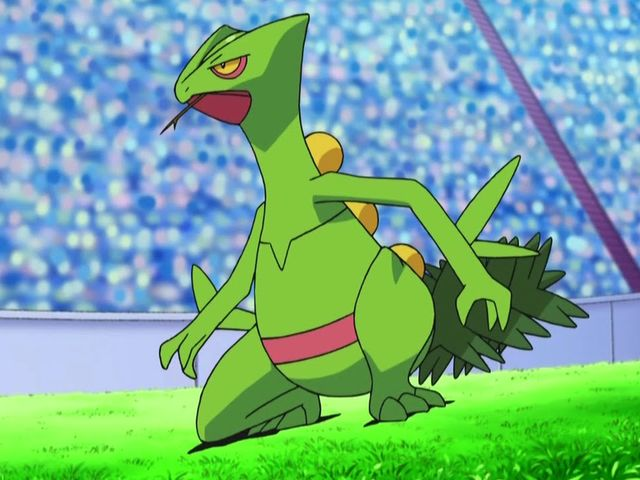 Treecko's final evolution is Sceptile!