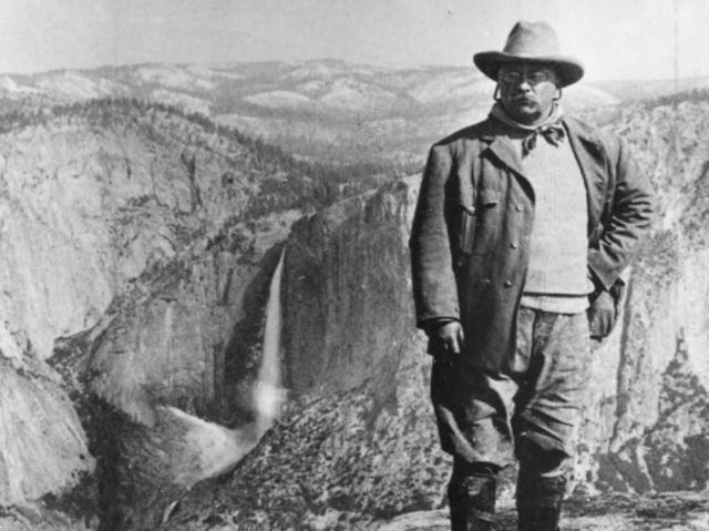 Theodore Roosevelt was a native of...