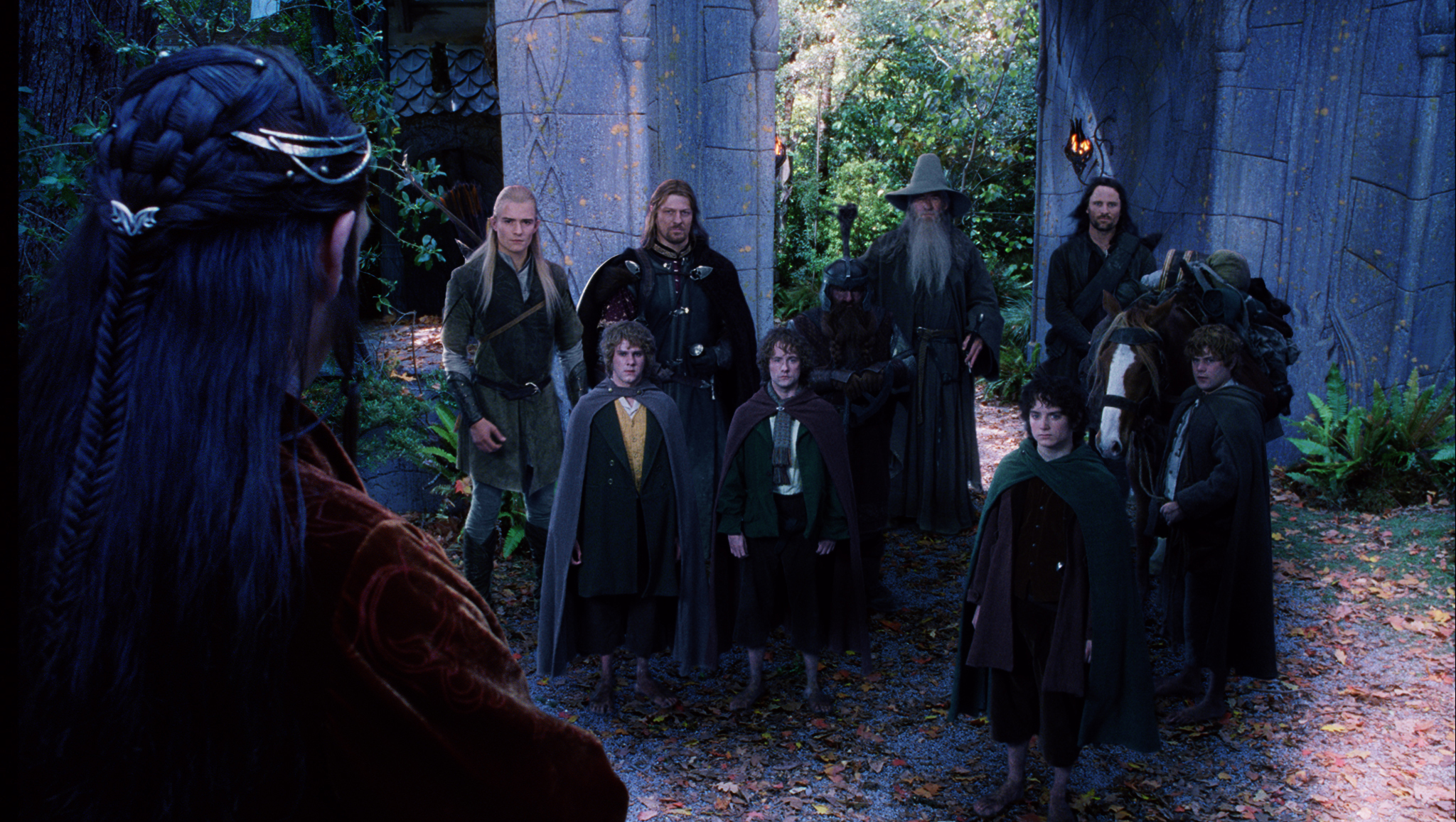 Image result for the fellowship of the ring
