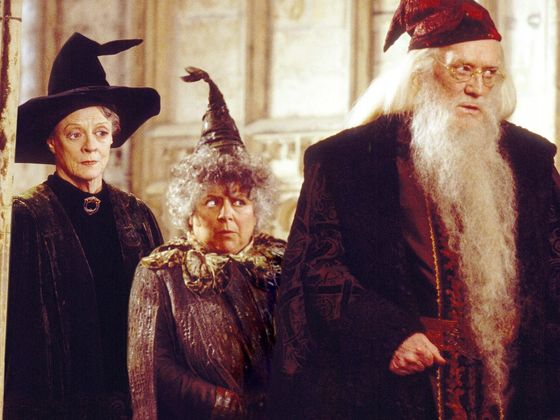 Which Older Harry Potter Character Will You Be Lucky Enough To Age Into?