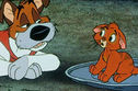 We Can Guess Your Favorite Disney Dog Based On The Kittens You Would Rather Cuddle!