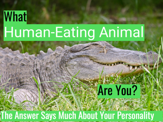 What Human-Eating Animal Are You? The Answer Says Much About Your Personality