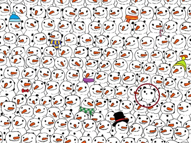 can you find the hidden panda