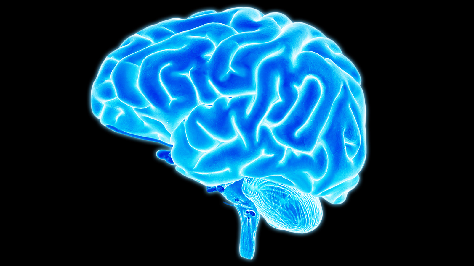 Is your brain strong enough