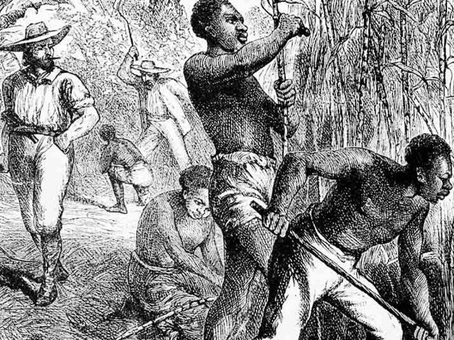 the relationship between sugar and slavery Race and the origins of plantation slavery  and provisions and even native american slaves for their sugar  especially the relationship between their.