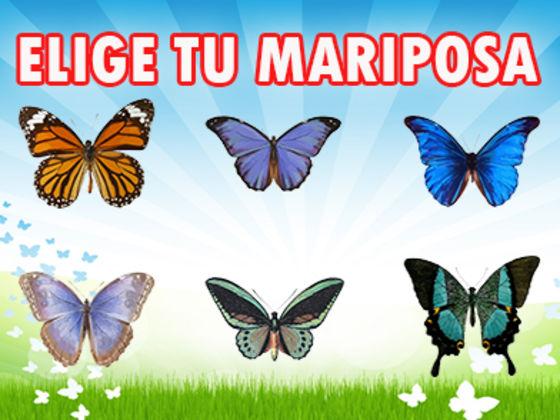 Elige tu Mariposa y descubre lo que tiene para ti
