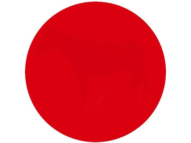 Can You See Whats Hidden In This Red Circle Some People Cant