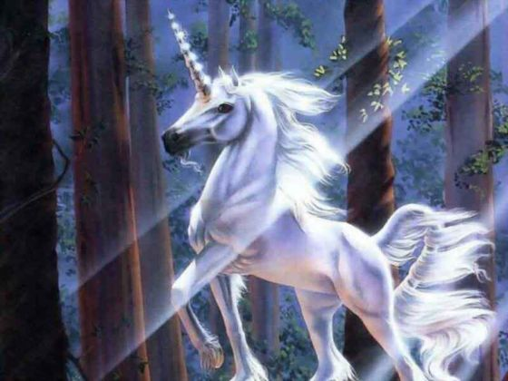 What Type Of Unicorn Are You?