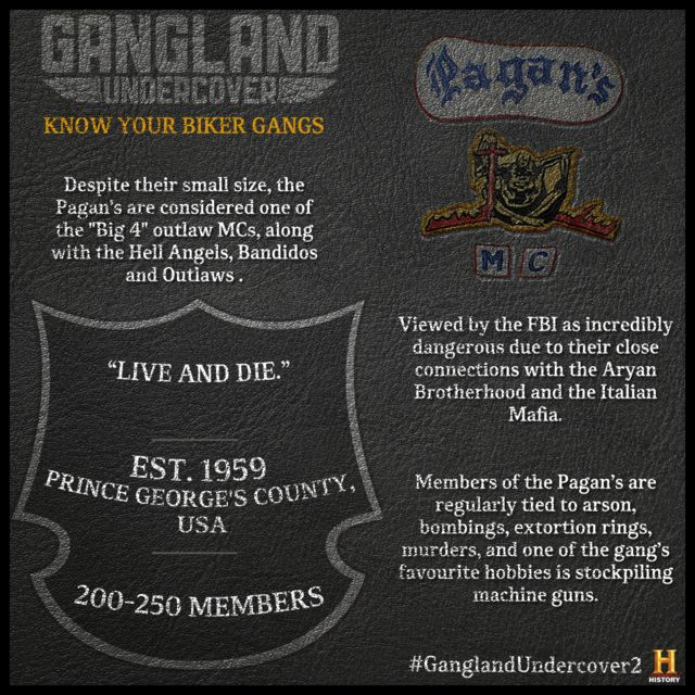 Outlaw Biker Gangs: The Facts | Playbuzz