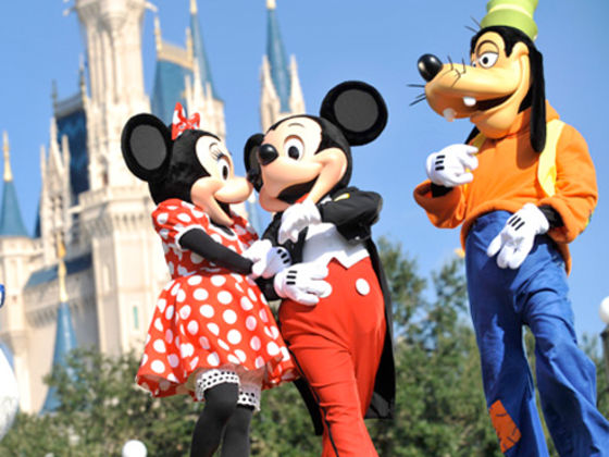 What Is Your Favorite Disney Park?