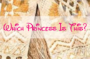 Can You Identify Each Of These Disney Princesses From Only A Close-Up Of Her Dress?