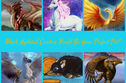 Which Mythical Creature Would Be Your Perfect Pet?