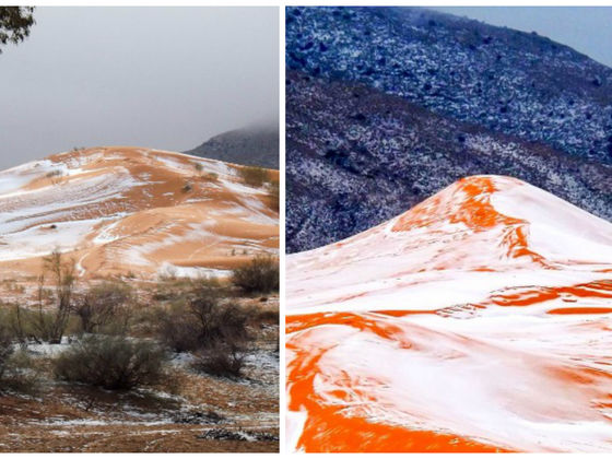 There Was Snow In The Sahara Dessert For The First Time In 37 Years