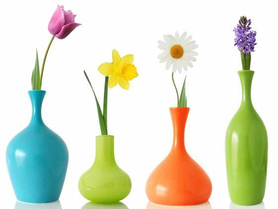 А какой вы цветок?