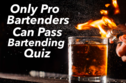 Only Pro Bartenders Can Pass This Bartending Quiz