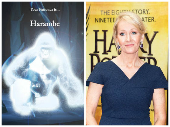 J. K. Rowling Had To Tell People That Harambe Is Not A Patronus