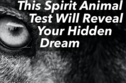 This Spirit Animal Test Will Reveal Your Hidden Dream