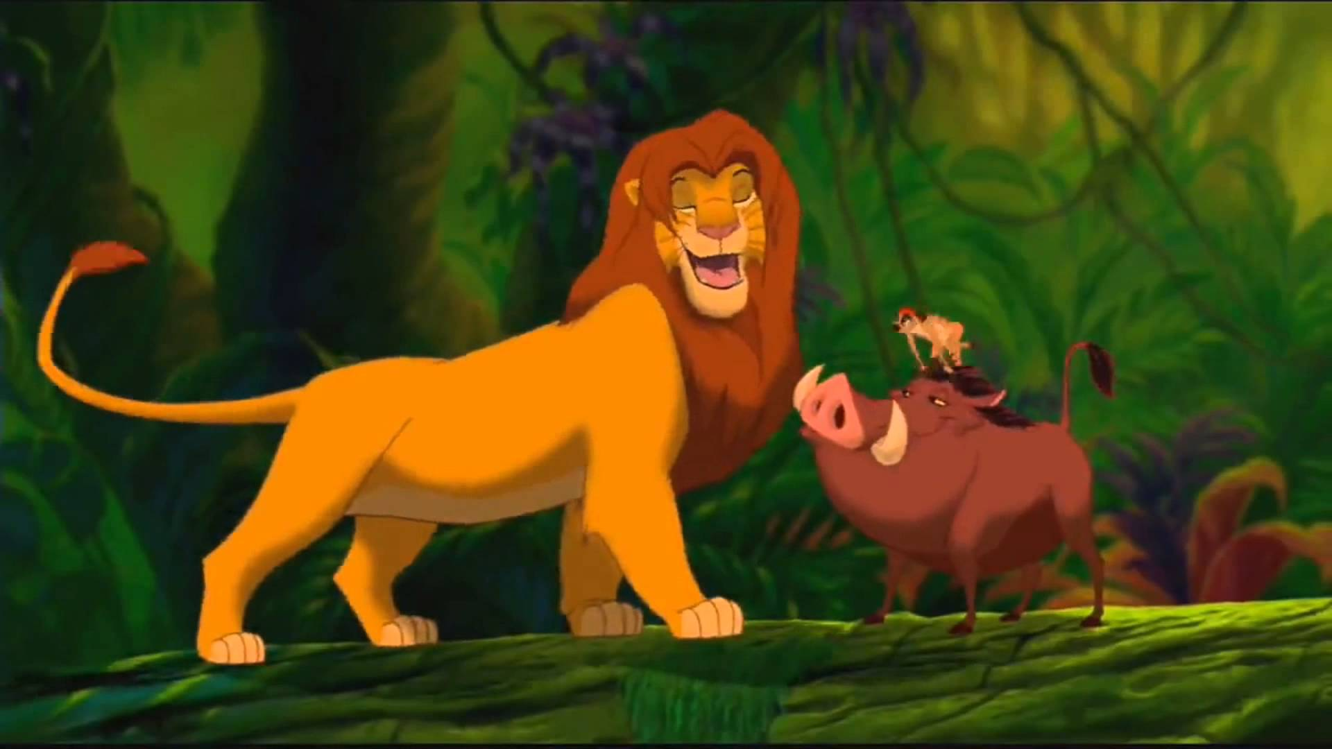 Lion King Wallpaper For Android The Galleries Of Hd Wallpaper