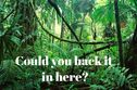 Could You Hack It In The Jungle Alone?