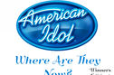 Where Are They Now? American Idol Winners