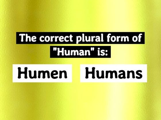 This Elementary Plural Forms Test Is Driving The Internet Crazy