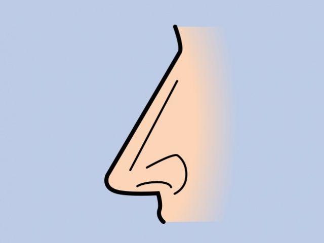 Hidung Lurus (Bright Side)