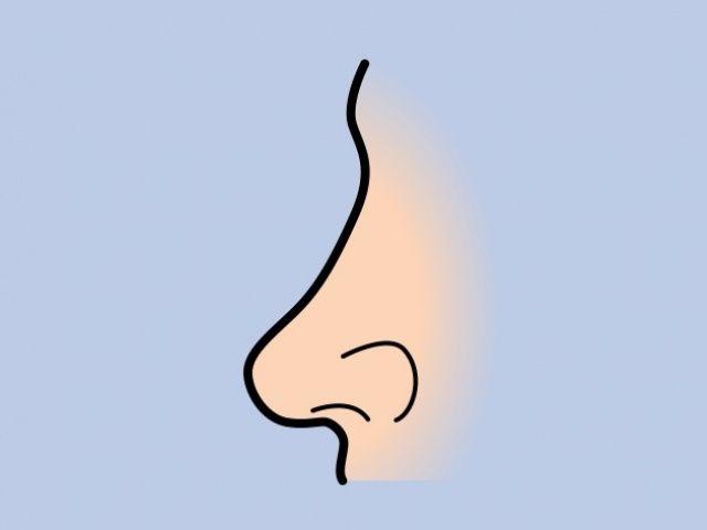 Blunt Nose (Bright Side)
