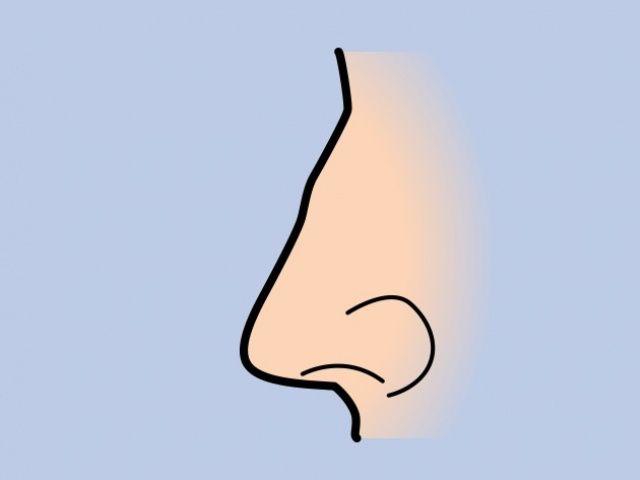 Hidung dengan benjolan kecil (Bright Side)