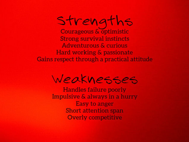 strengths and weaknesses of a person