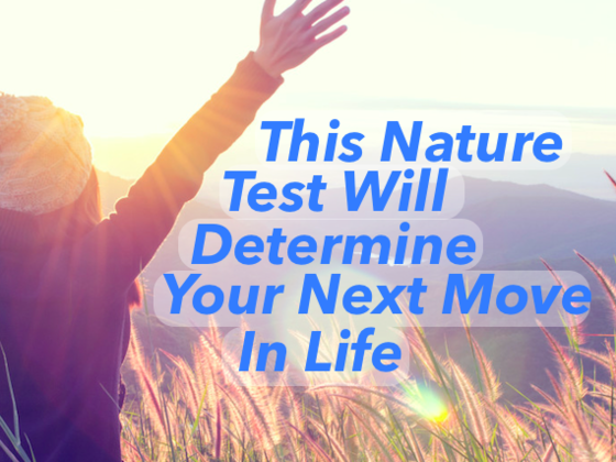 This Nature Test Will Determine Your Next Move In Life