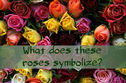 What Do The Color Of Roses Tell You?