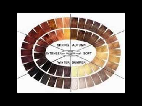 Color Wheel For Hair Dye | Hair Color Trends