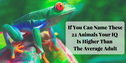 If You Can Name These 22 Animals Your IQ Is Higher Than The Average Adult