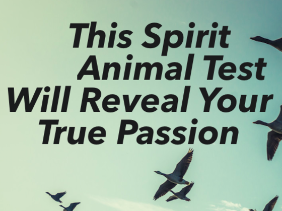 This Spirit Animal Test Will Reveal Your True Passion