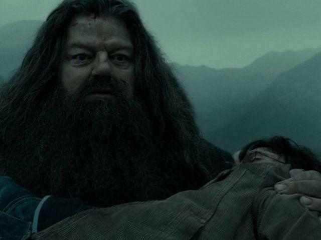Hagrid tenant le corps