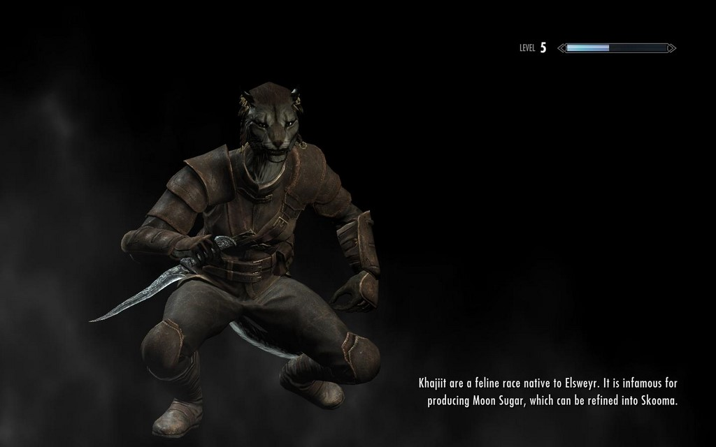 what skyrim race are you playbuzz