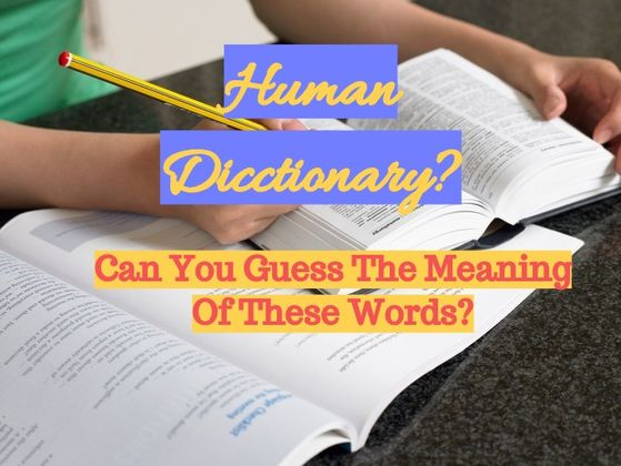 Human dictionary? Can you guess the meaning of these words?