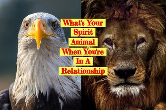 What's Your Spirit Animal When You're In A Relationship?
