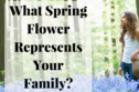 What Spring Flower Represents Your Family?