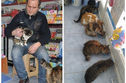 This Istanbul Shop Owner Has Turned His Store Into A Temporary Animal Sanctuary