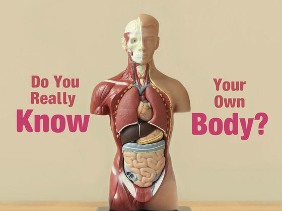 Image result for knowing your body