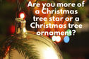 What Type of Christmas Tree Decoration Are You?