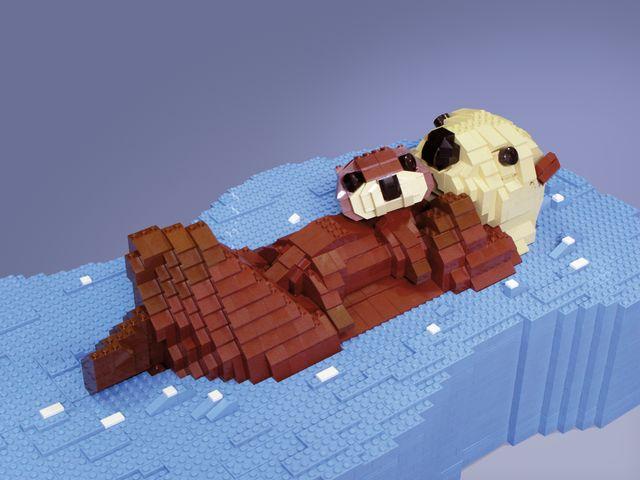 Sea Otter Mum & Pup