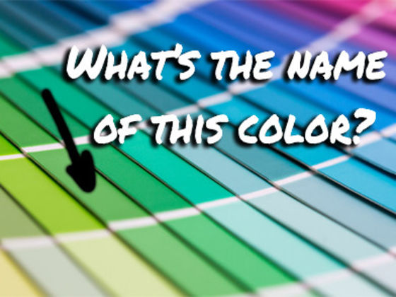 Can You Name ALL the Colors?